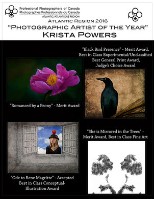 Photographic Artist of The Year
