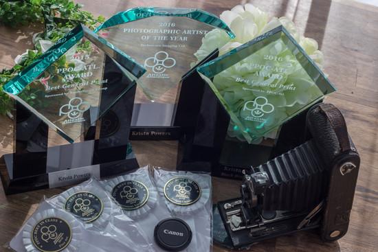 AWARDS SHOT FOLIO & WEB.jpg