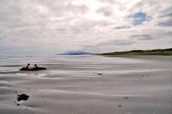 beach for two.JPG
