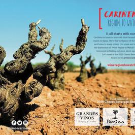 Cariñena Wine Region
