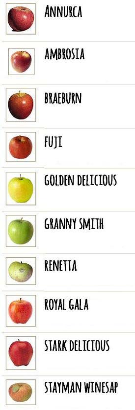 Varità di Mela, annuraca, ambrosia, braeburn, fuji, golden, granny, renetta, royal, stark, stayman