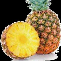 Ananas e Aloe Vera e Pesca