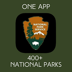 FOFM NPS app.png