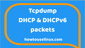 Tcpdump: capture DHCP & DHCPv6 packets