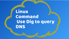 Using Linux Dig to Query DNS Records
