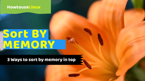 Sort By Memory In Top Command on Linux