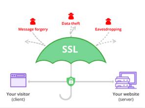 Check SSL Connection with OpenSSL S_client Command