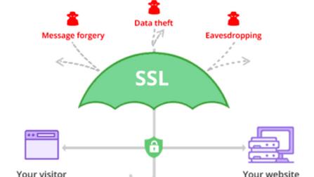 Exploring SSL Connection with OpenSSL S_client Command