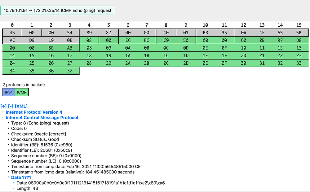 ICMP Packet