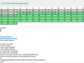 Exploring ICMP with Examples