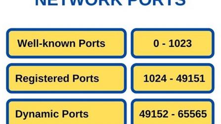 Understanding Network Port with Examples