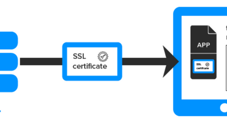 Get SSL server certificate from Server with Openssl s_client