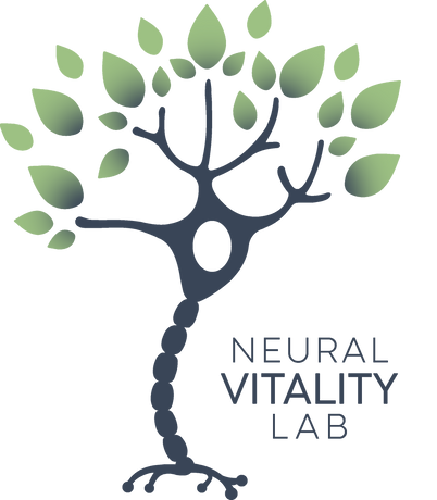 neural_vitality_lab_gradient.png