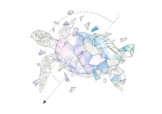 S1, Geometric Illustration, 2020-2021 d.