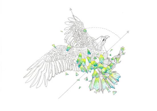 S1, Geometric Illustration, 2020-2021 s.