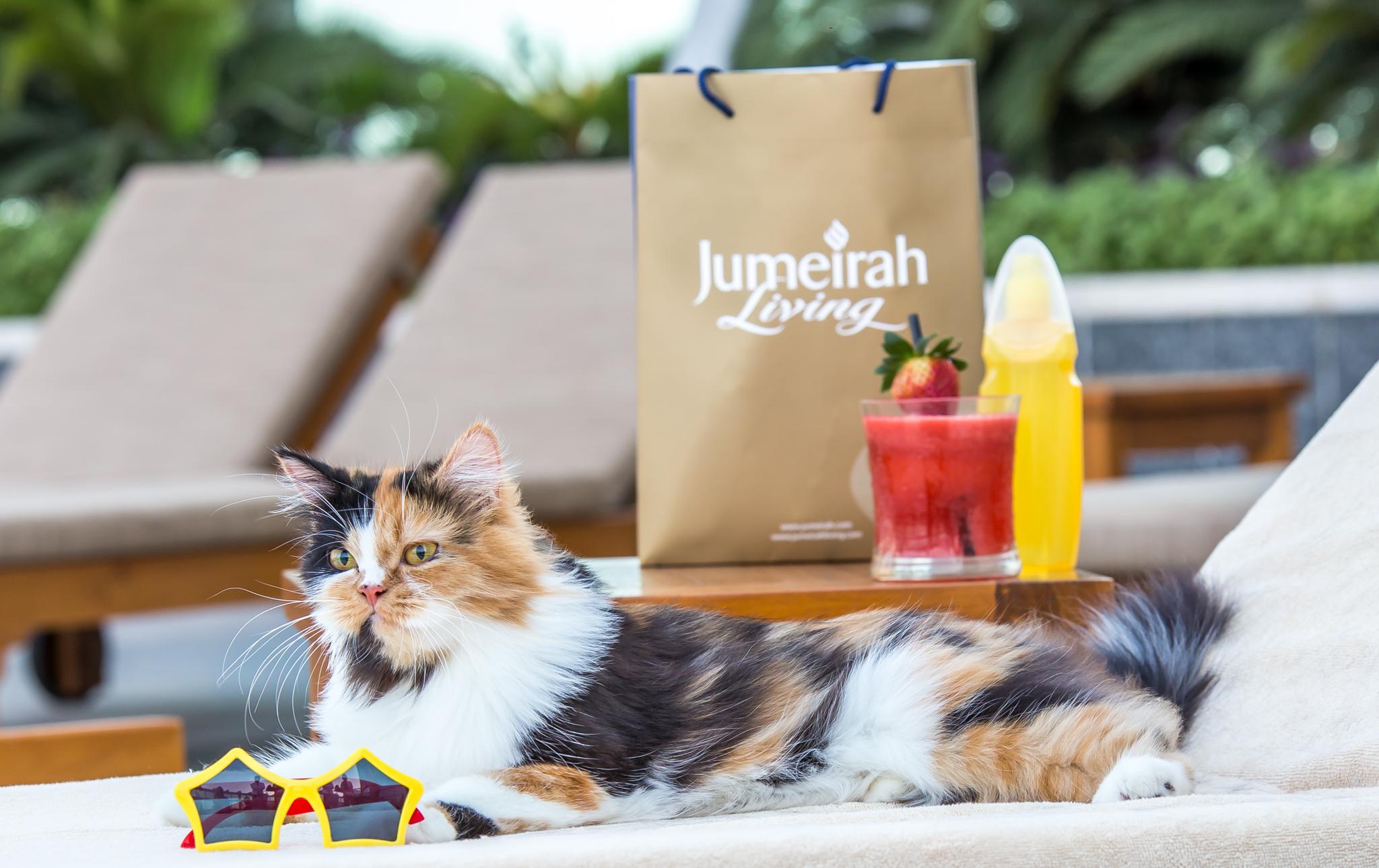 Amelia- Jumeirah