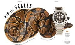 ESQUIRE - Snake opener (1)