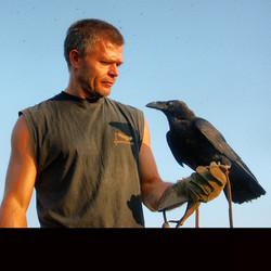 boros crow