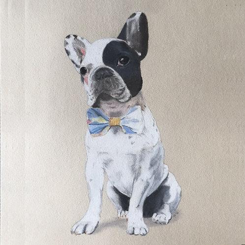 Hand Drawn Pastel Pet Portrait