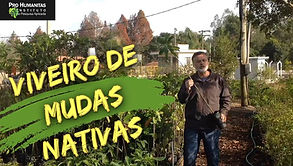 Capa Viveiro de Mudas.jpg