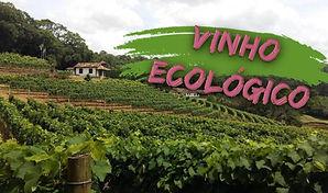 Vinho_Ecológico.jpg