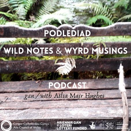 Podlediad Newydd - WILD NOTES & WYRD MUSINGS - New Podcast!