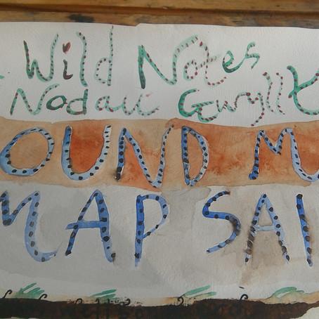 Sound Map #2 @ Gerddi Bro Ddyfi