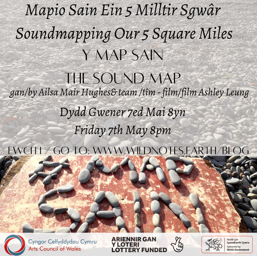4 - Y Map Sain / The Sound Map