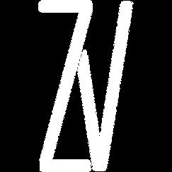 ZV Logo White on Trans.png