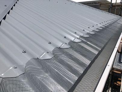 Tin roof-reduced.jpg