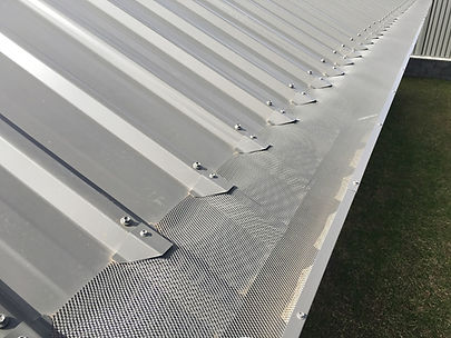 Tin roof 2-reduced.jpg