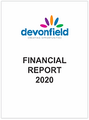 Fin Report 2020.png