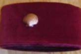 ST Thomas of Acorn Hat & Badge
