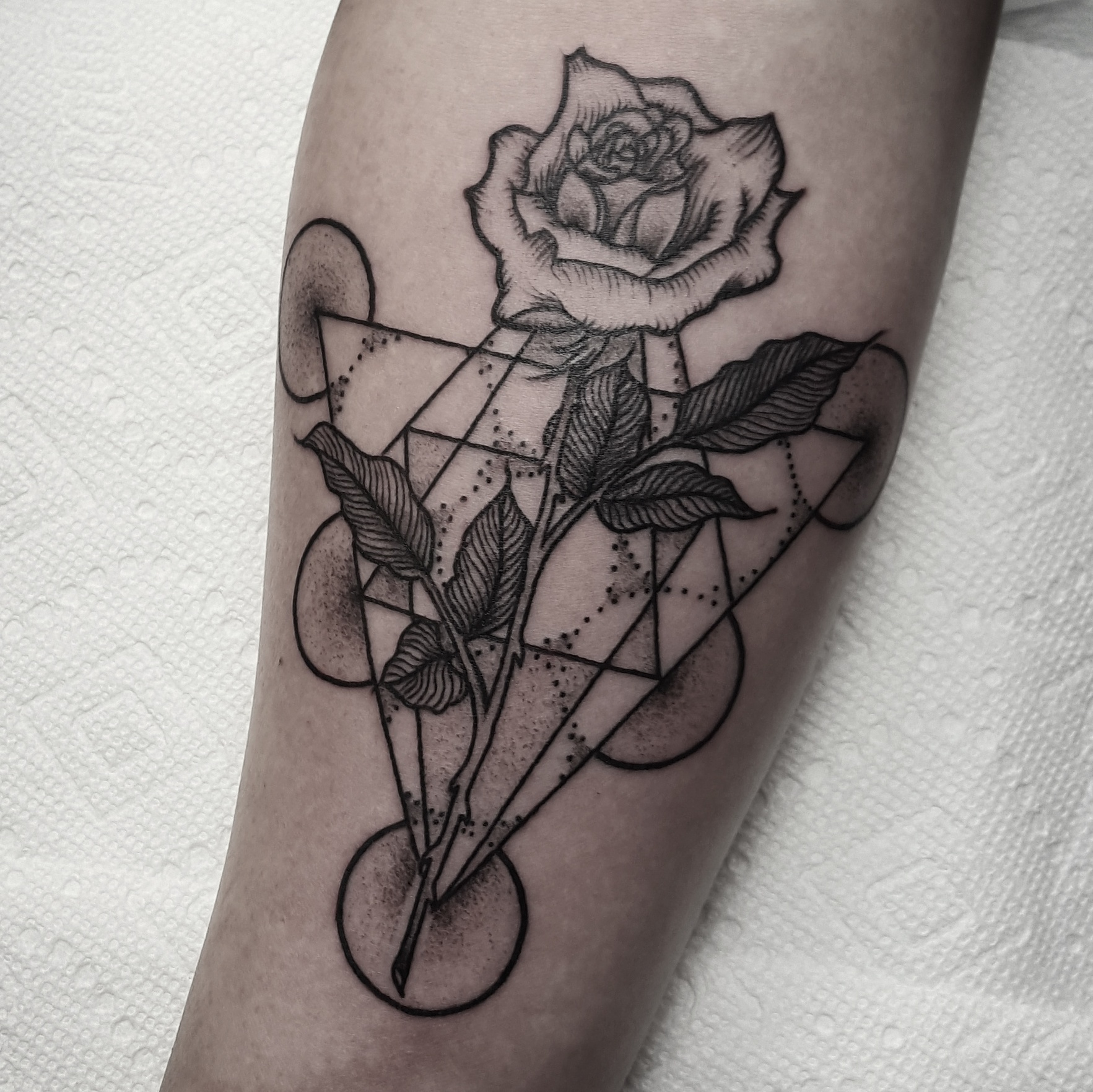 Rose and Geometry