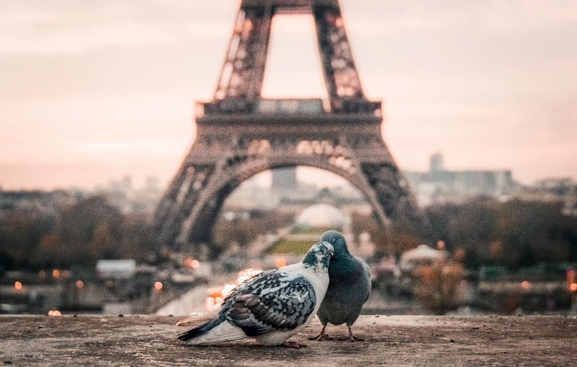 เรียนต่อยุโรป เรียนเมืองไหนในยุโรปดีนะ ปารีส ฝรั่งเศสดีไหม?