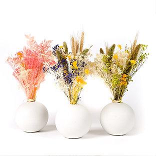 Vase Boule de Fleurs séchées - Setaria Parme Doux