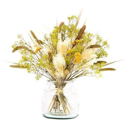 Bouquet de Fleurs séchées - Setaria XL - Vert Prairie