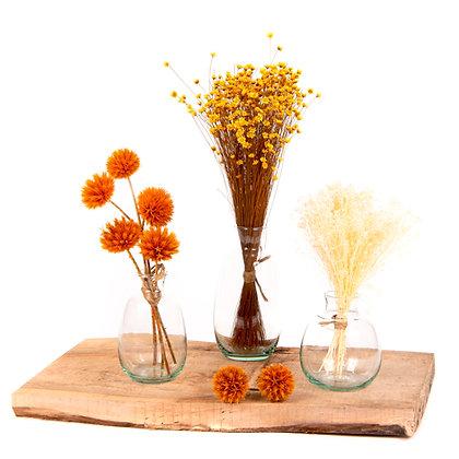 3 Vases de fleurs séchées - Trio Echinops Orange Vibrant