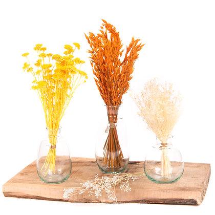 3 Vases de fleurs séchées  - Trio Avoine Orange Vibrant