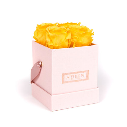4 Roses Eternelles Jaune d'Or - Box carrée Rose Poudré