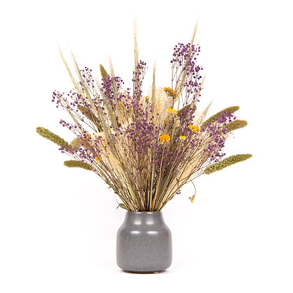 DRIED FLOWERS - SETARIA M 224 - SOFT PARMA