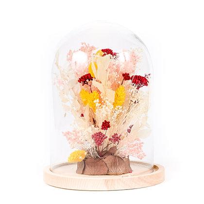 Cloche de Fleurs séchées  - Ruscus Fuchsia Peps