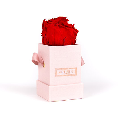 1 Eternal Rose - Passion Red - Powder Pink square Box