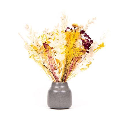 Bouquet de Fleurs séchées - Ruscus Jaune d'Or