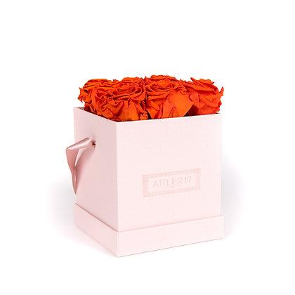 9 Roses Eternelles Orange Vibrant - Box carrée Rose Poudré