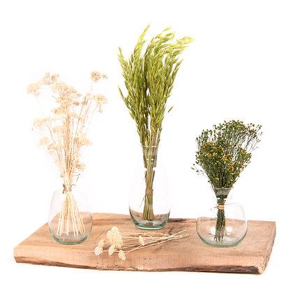 3 Vases de fleurs séchées - Trio Avoine Vert Prairie
