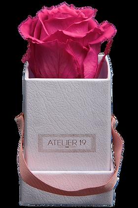1 Rose Eternelle Fuchsia Peps - Box carrée Blanche