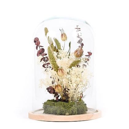 Cloche de Fleurs séchées  - Eucalyptus Pourpre