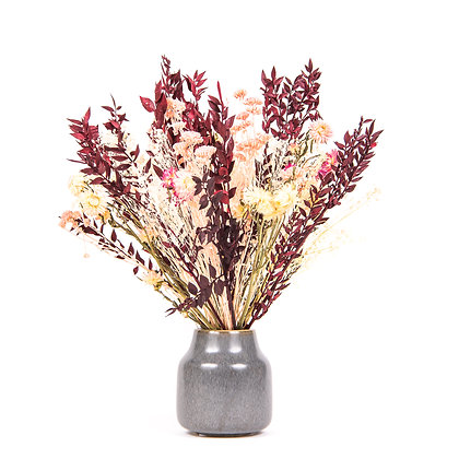 DRIED FLOWERS - RUSCUS M 216 - INTENSE CARMINE