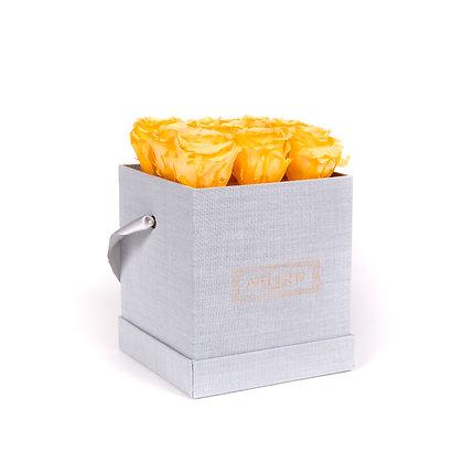 9 Roses Eternelles Pêche Velouté - Box carrée Gris Chiné